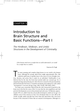 Introduction to Brain Structure and Basic Functions—Part I
