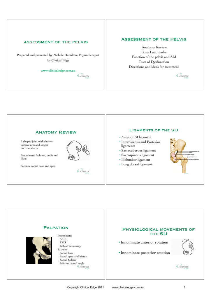Assessment of the Pelvis Handout PPT