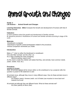 Animal Growth and Change