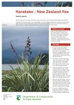 Harakeke / New Zealand flax - Department of Conservation