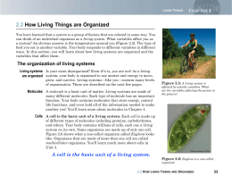 2.2 How Living Things are Organized