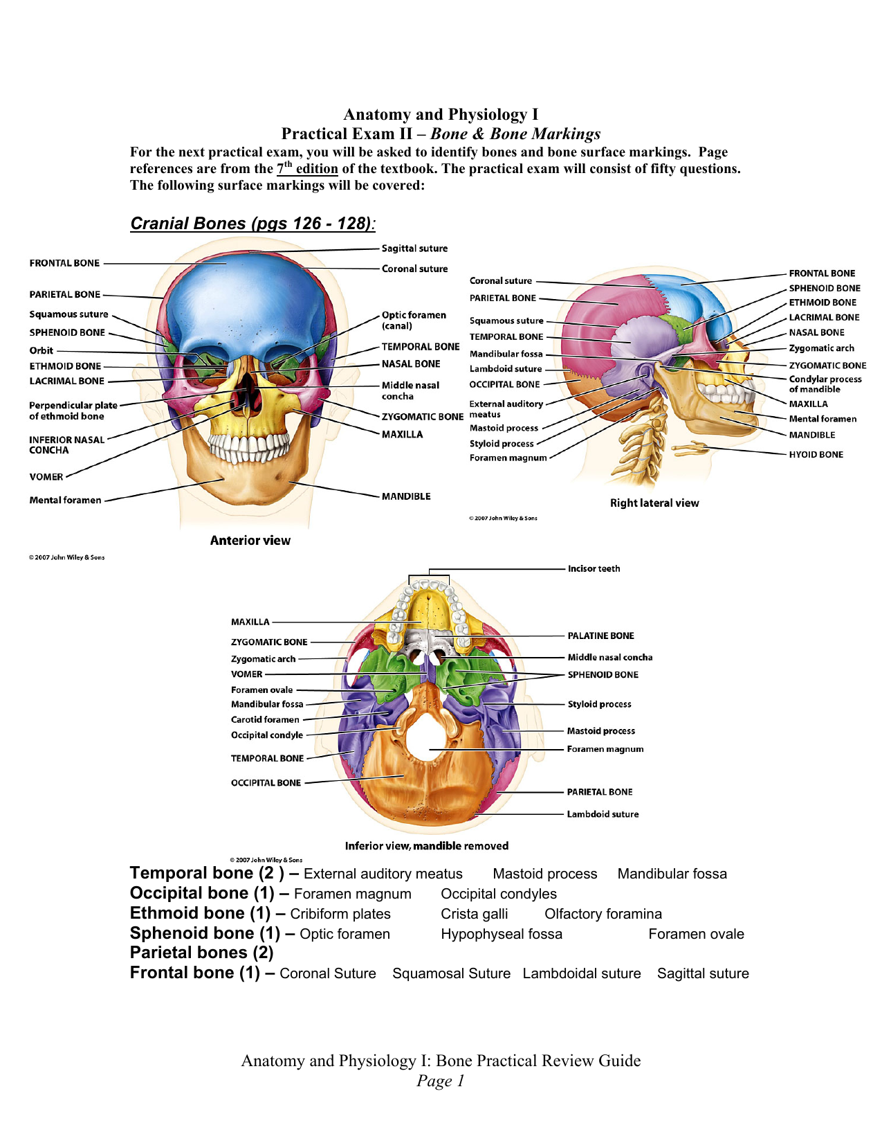 Anatomy and Physiology I: Bone Practical Review Guide Page 1
