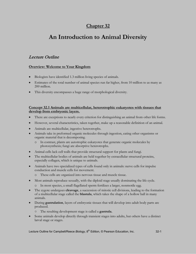 Introduction To Animals Worksheet Chapter 32 Beansmith