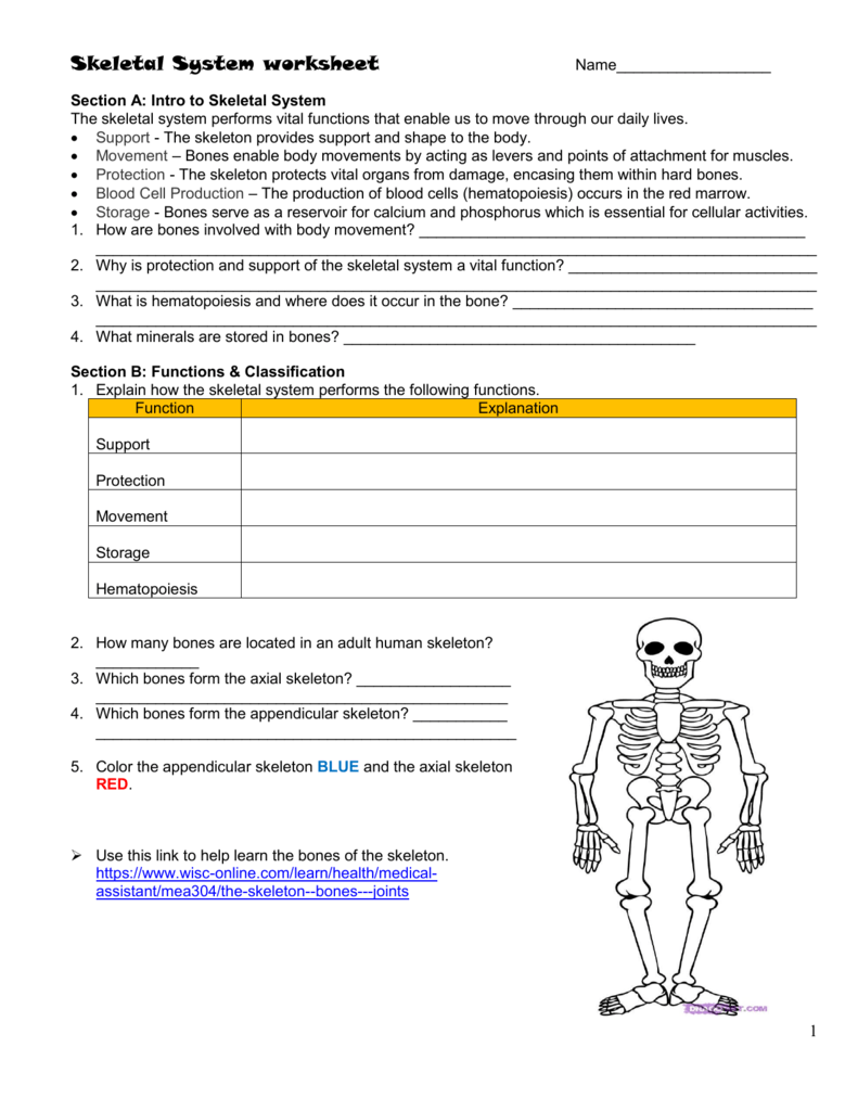 Worksheets Skeletal System Worksheet skeletal system worksheet 008160858 1 485ad9ecd978069ed765c1fe9349f3bf png