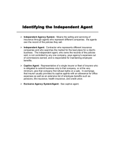 Identifying the Independent Agent