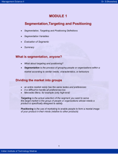 Segmentation,Targeting and Positioning