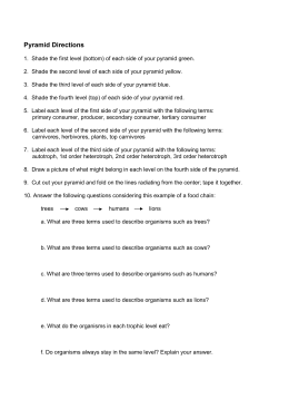 ecological energy pyramid worksheet