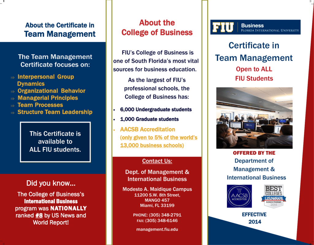 Certificate in Team Management