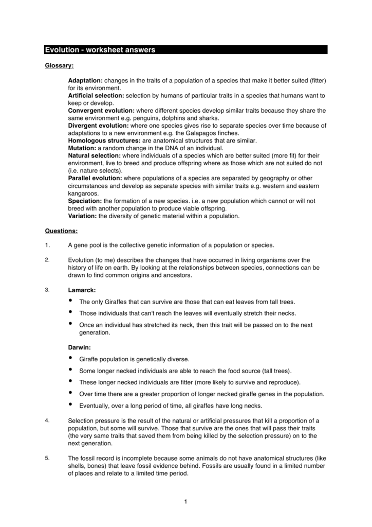 Evolution Worksheet Answers