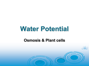 36 - Water Potential