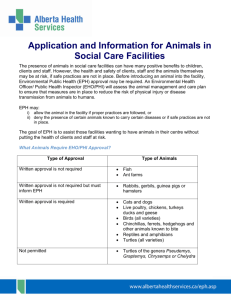 Application and Information for Animals in Social Care Facilities