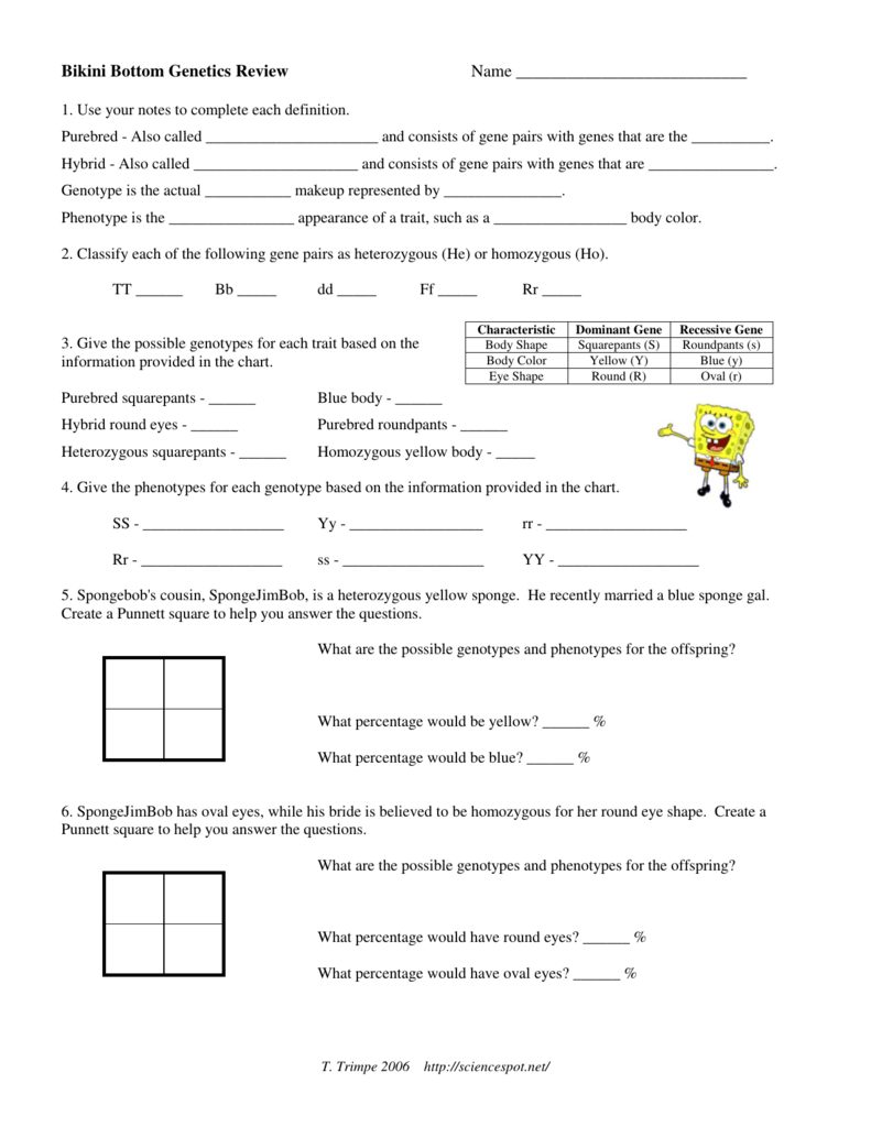 Spongebob genetics worksheets answers