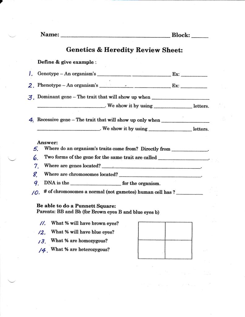 Genetics & Heredity Review Sheet: