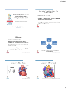 Objective Anatomy of the Heart Anatomy of The Heart