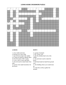 Leonis Adobe Crossword Puzzle