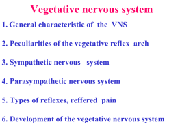 Vegetative nervous system