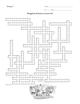 Crossword Protists (Ch19)