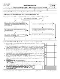 2010 Form 1040 (Schedule SE) - The Benefit Bank: Self