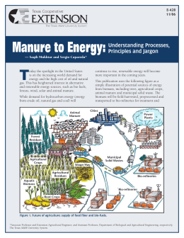 Manure to Energy:Understanding Processes, Principles and Jargon