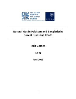 Natural Gas in South Asia Pakistan and Bangladesh: current issues