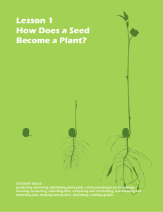 Lesson 1 How Does a Seed Become a Plant?