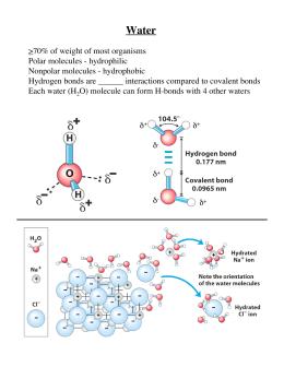 Acids Bases