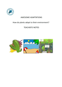 Teachers Notes pdf - Ventnor Botanic Garden