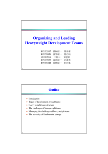 Managing Challenges of Heavyweight Team