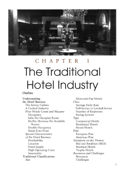 """The Traditional Hotel Industry"""""""