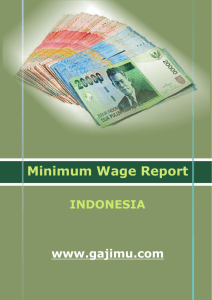 Minimum Wage Report - WageIndicator Foundation