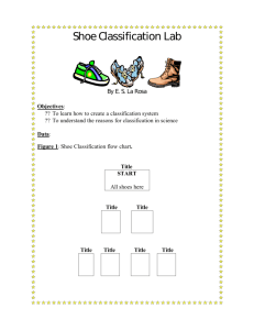 Shoe Classification Lab