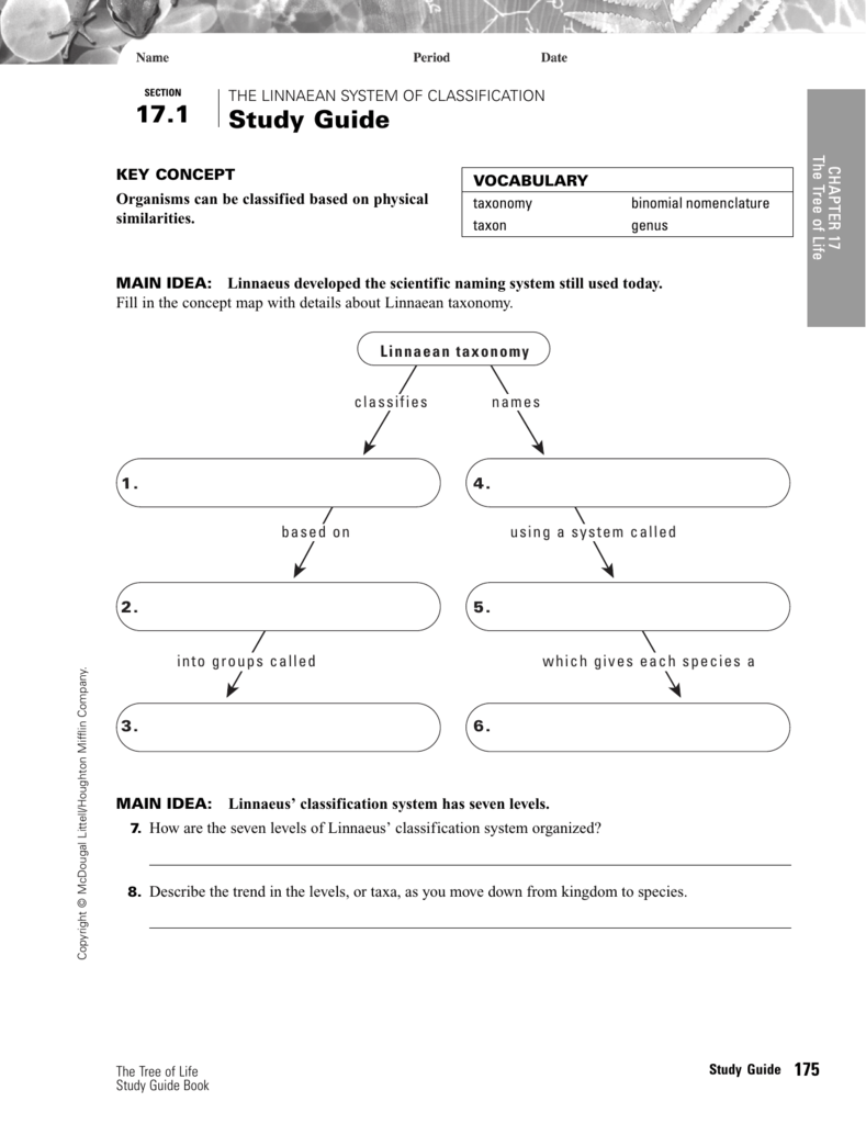 Worksheet Taxonomy Concept Map 17 1