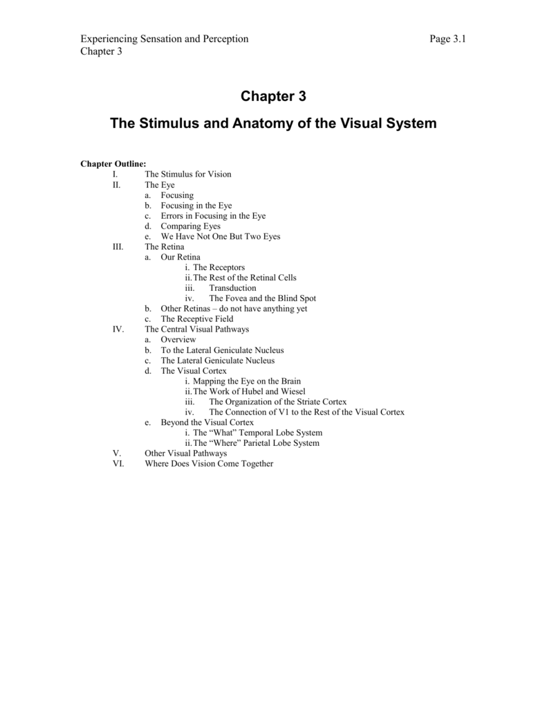 Chapter 3 The Stimulus And Anatomy Of The Visual System