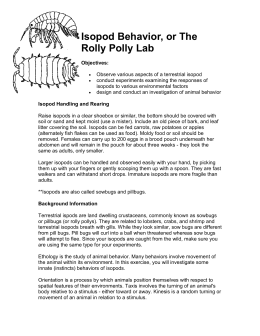 Isopod Behavior Lab Report Paper