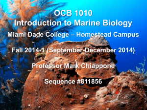 OCB 1010 Marine Biology MW 10 AM Fall 2014-1