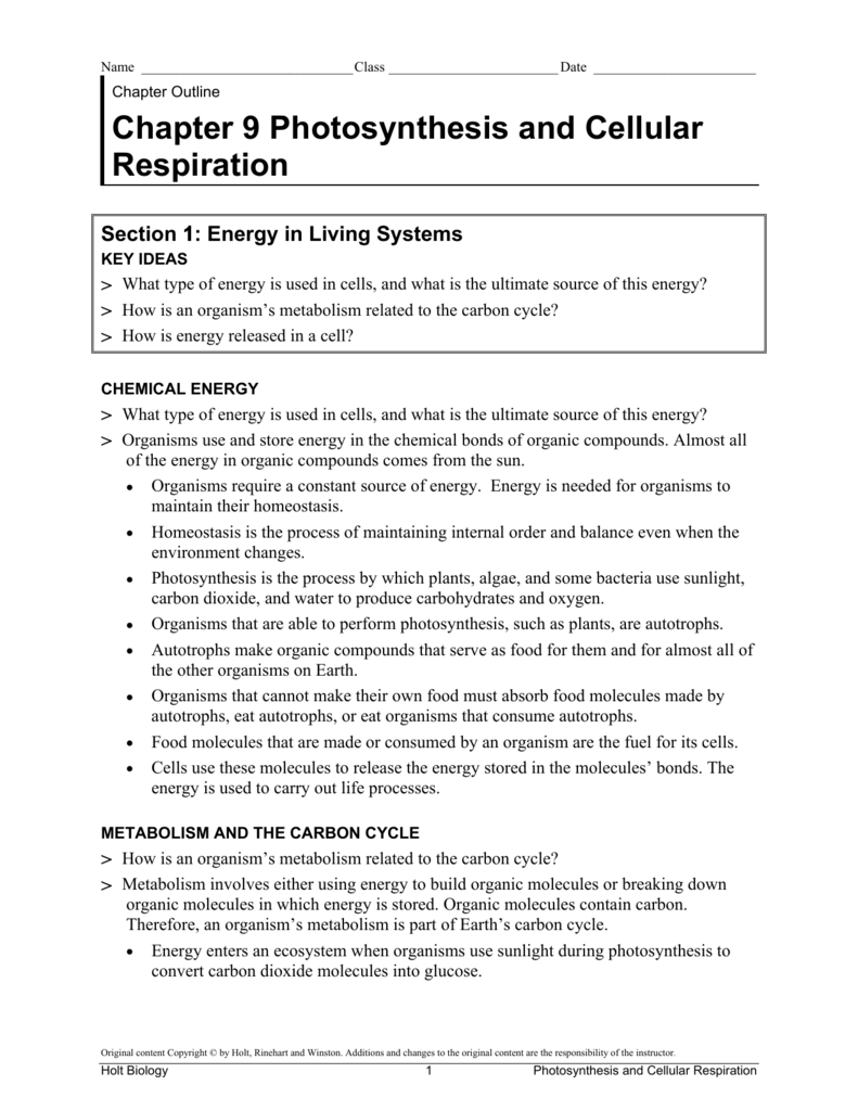 Holt Biology Worksheets Answers Sharebrowse – Biology Worksheets