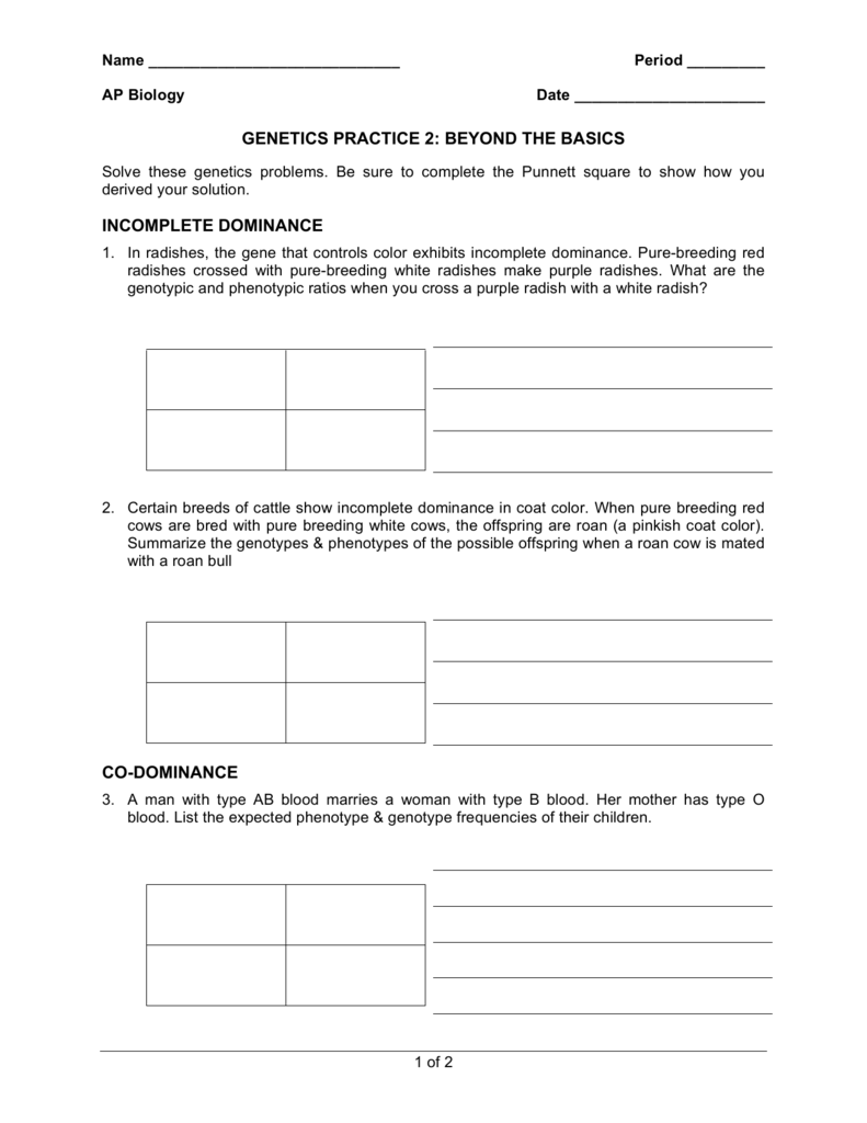 genetics practice 2 beyond the basics incomplete dominance co – Genetics Basics Worksheet