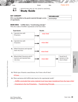 Ch 8 Workbook Answer Key