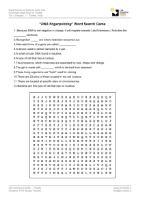 """DNA fingerprinting"" Word Search Game"
