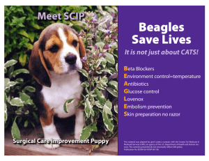 BEAGLES - IPRO Blogs