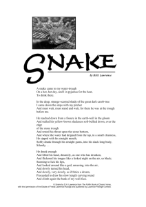 Lawrences Snake An Analysis In His Poem Snake Dh Lawrence