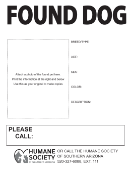Found Dog - Humane Society of Southern Arizona