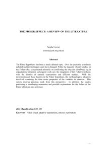 the fisher effect: a review of the literature