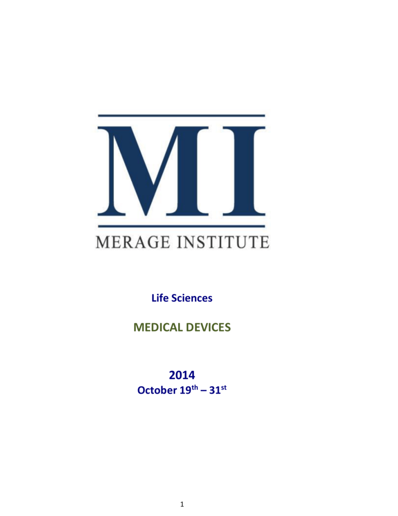Merage Institute Innovation Bridge Leadership Program