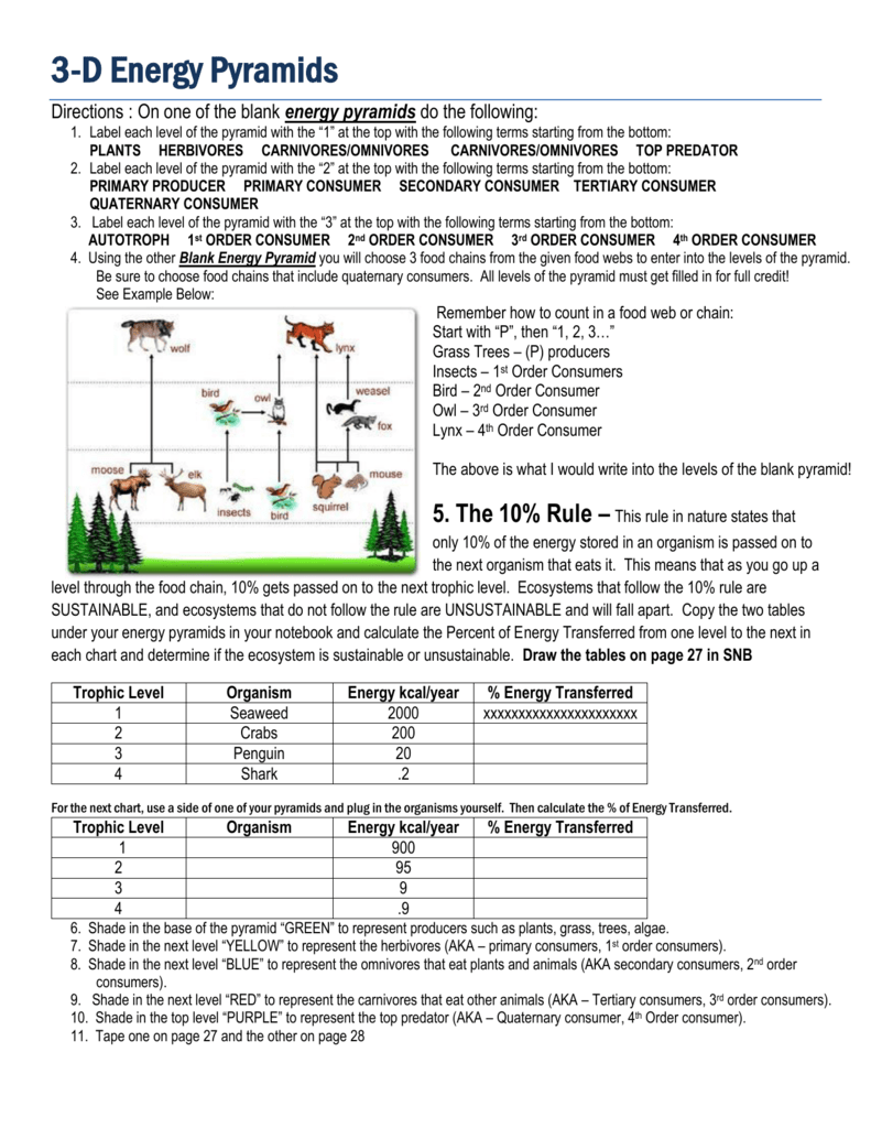 3D ENERGY PYRAMID Directions and Templates