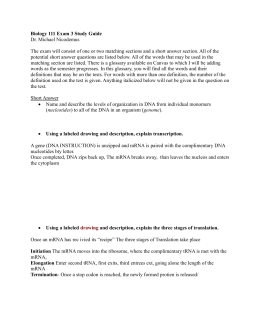 Biology 111 Exam 3 Study Guide Dr. Michael Nicodemus The exam