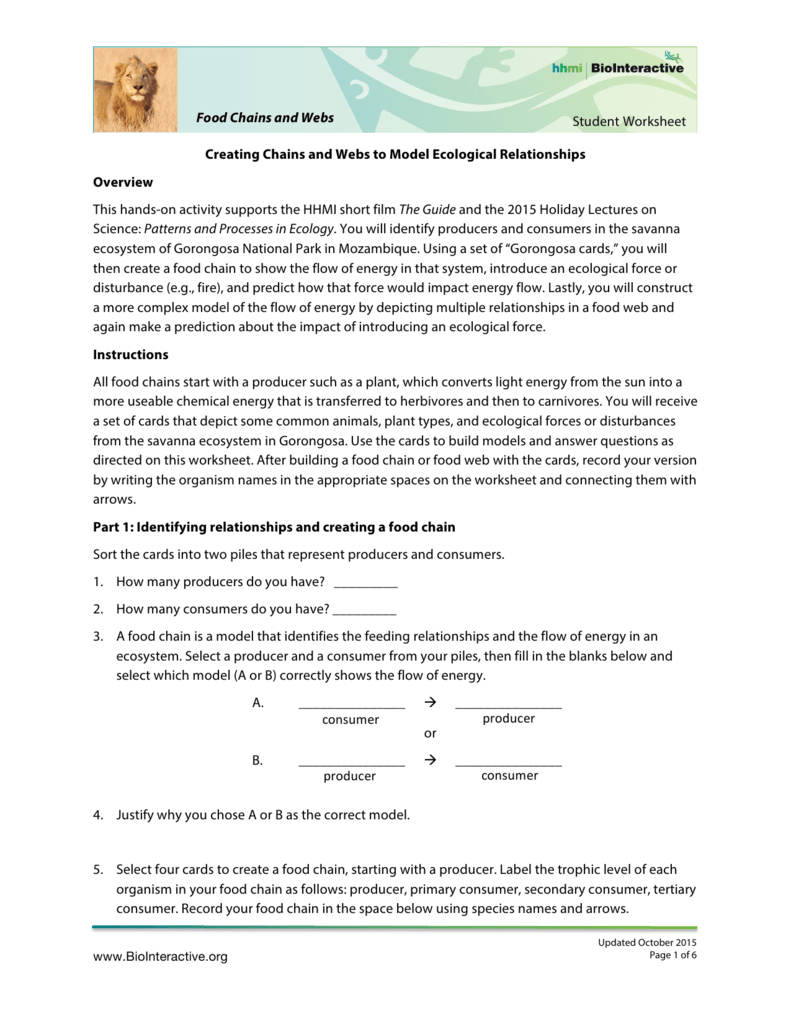 worksheet Producers And Consumers Worksheet student worksheet food chains and webs creating and