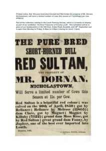 the pure bred short-horned bull Red Sultan the property of Mr