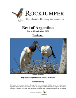 Best of Argentina - Rockjumper Birding Tours