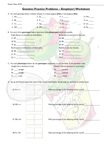 Genetics Practice Problems – Simple(er) Worksheet